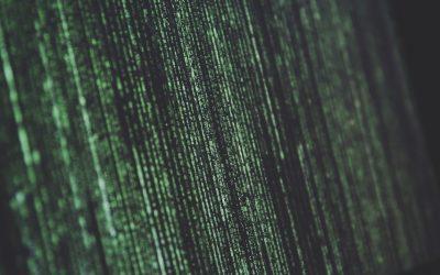 Qu'est-ce qu'une attaque DDOS et comment s'en préserver ?